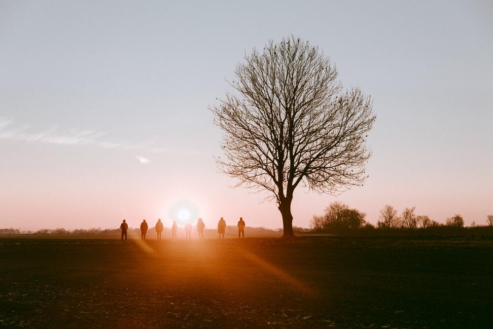kilka niewyraźnych sylwetek na tle słońca obok drzewo