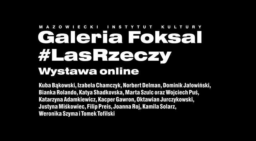 #lasrzeczy on-line, Galeria Foksal
