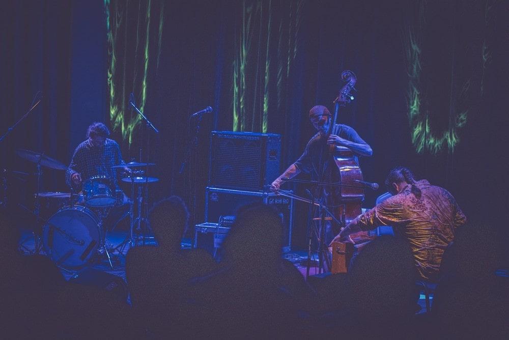 na pierwszym planie widać publiczność podczas koncertu Piotr Damasiewicz Into The Roots w MIKu, zespół w składzie Zbigniew kozera na kontrabasie, Piotr Damasiewicz na harmonium, Paweł Szpura na perkusji. Wydarzenie odbyło się w ramach projektu Space of Jazz.