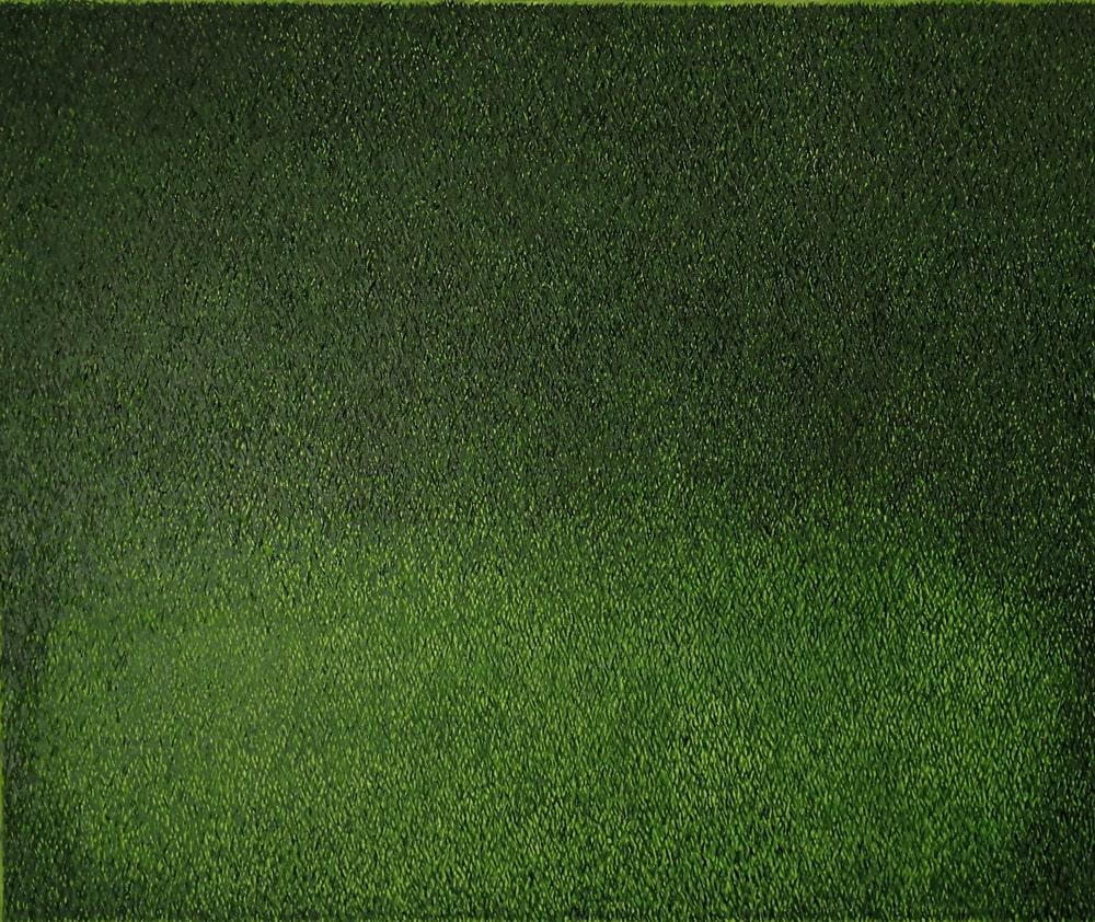 grafika: zielona powierzchnia podobna do trawy